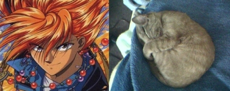 Tasuki the Fushigi Yuugi charcter and Tasuki our kitty!